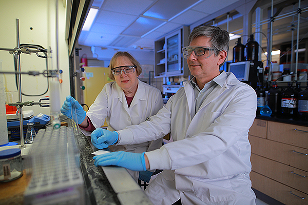 Drs. Katherine Wall and Steven Sucheck work in lab on vaccine.
